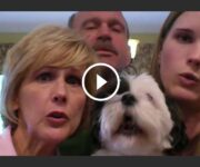 dog sings happy birthay chien chante